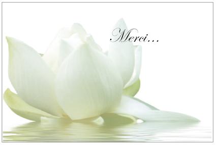 Fleur De Lotus R V